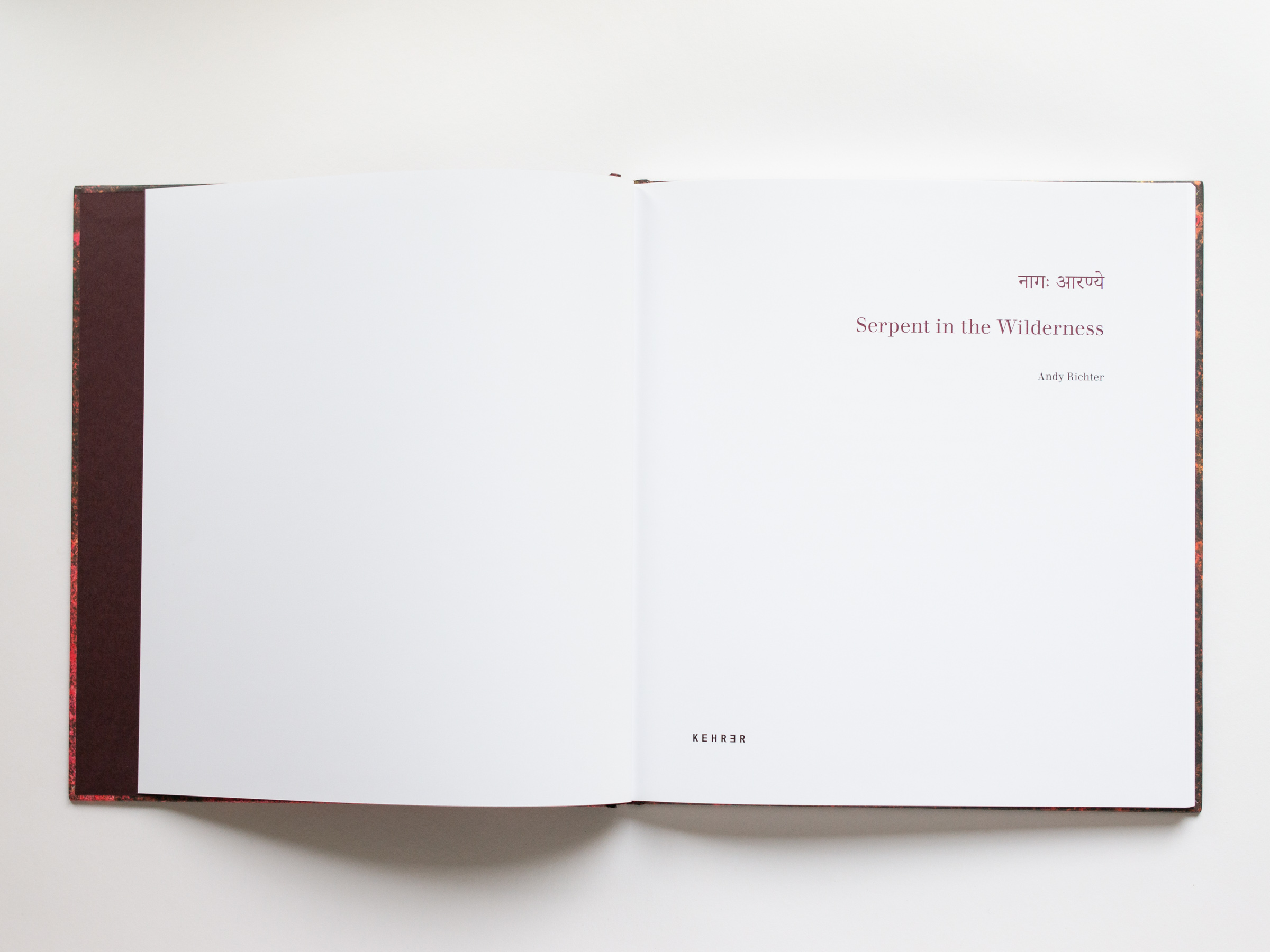 Serpent in the Wilderness, A Photographic Exploration of Yoga, published by Kehrer Verlag, 2018.